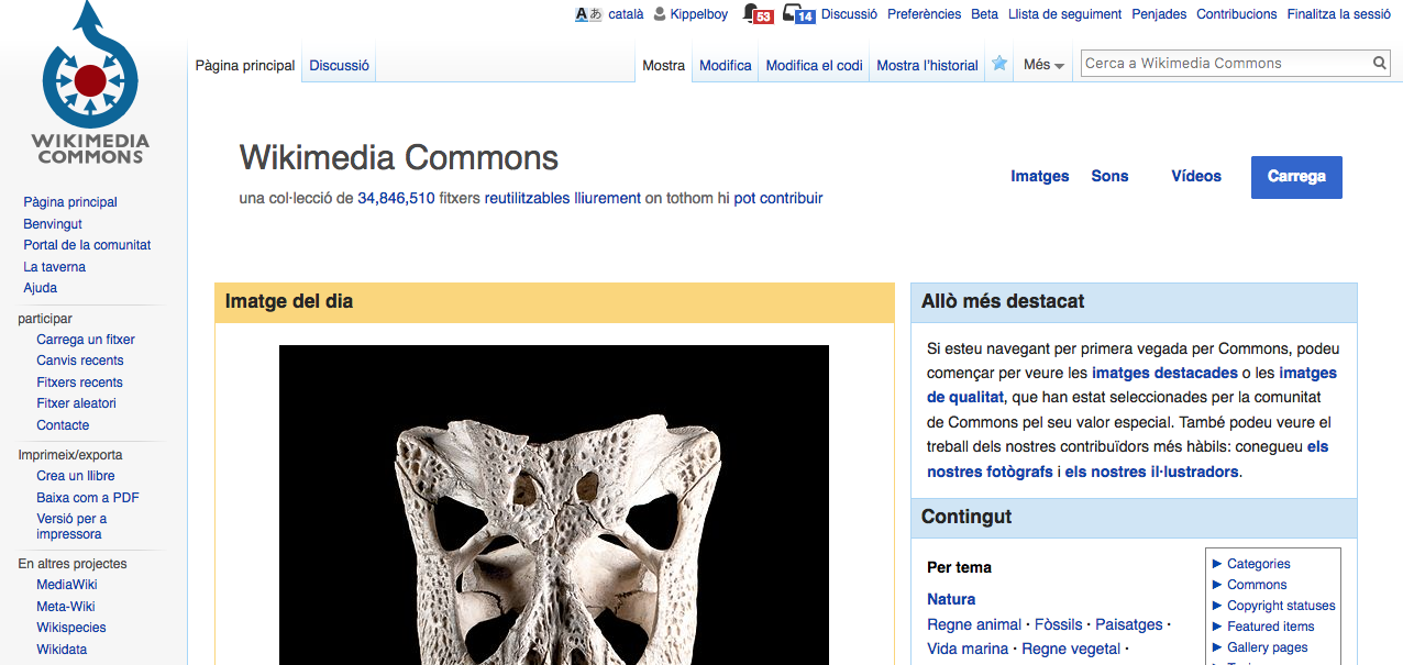 WikimediaCommons screenshot